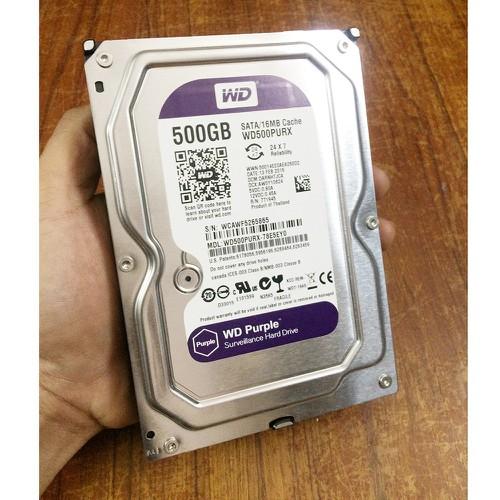 Ổ CỨNG HDD WD PURPLE 500GB (Chuyên Camera)
